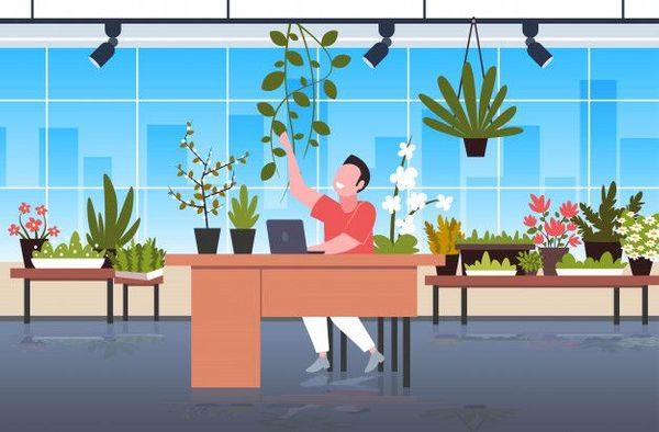 Ways to Go Green in the Workplace